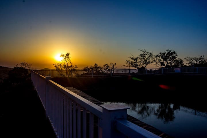 Sunrise behind Farm Pond