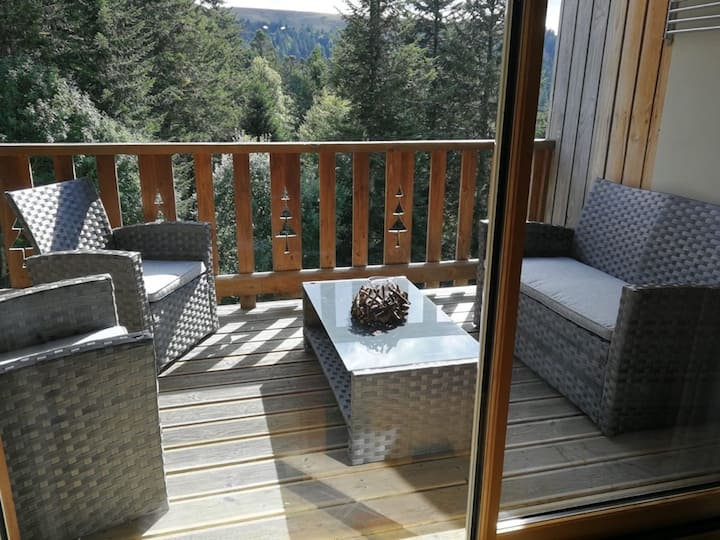 CHALET 3CH PIED DE PISTE SUPER LIORAN PARKING WIFI