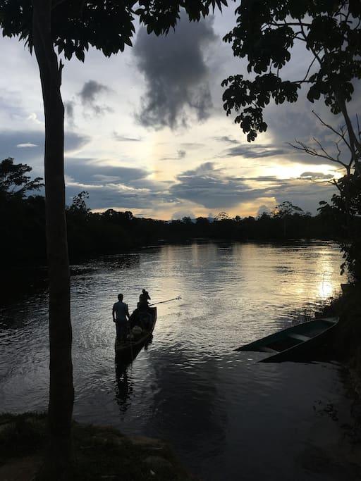 Sunset in the Amazon Rainforest
