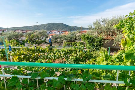 Room, 200m from city center, in Primosten, Terrace