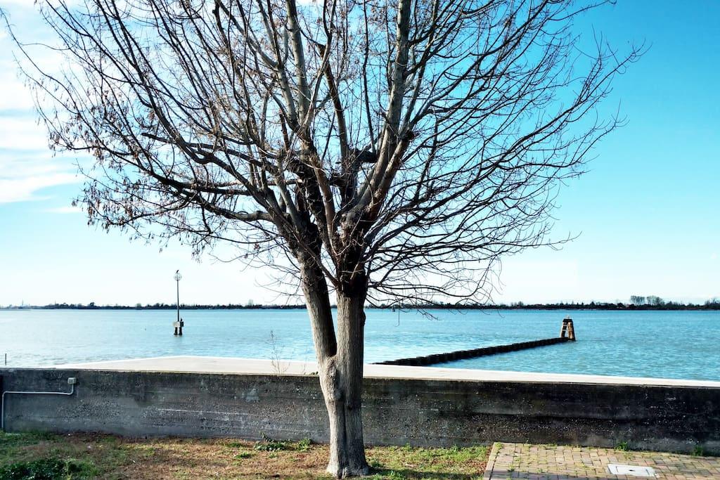 Ampio appartamento a 5 minuti a piedi dall'imbarcadero per Venezia e dalla stazione dell'autobus,vicinissimo anche alla spiaggia poco più di un 1 km.