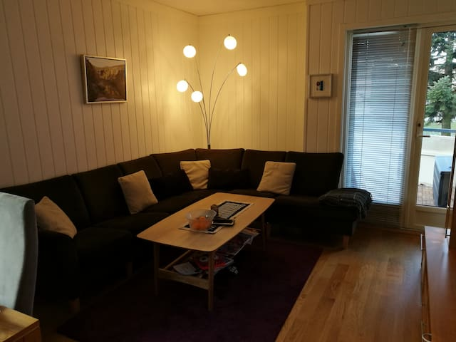 One bedroom apartement central, Oslo, with terrace - Oslo - Leilighet