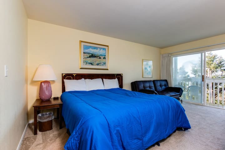 Dog-friendly studio with ocean views and a balcony - close to the beach!