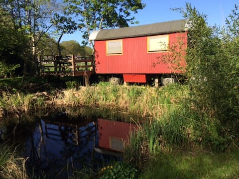 """Der """"Eisvogel-Wagen"""" im Garten der Mühle 17"""