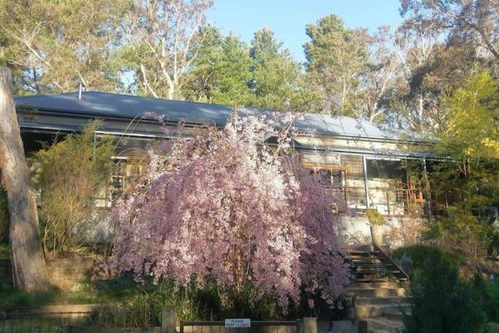 Katoomba Private Bush Retreat No.2