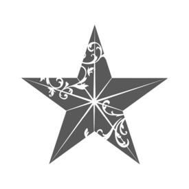 Mathew At The Star Inn's logo