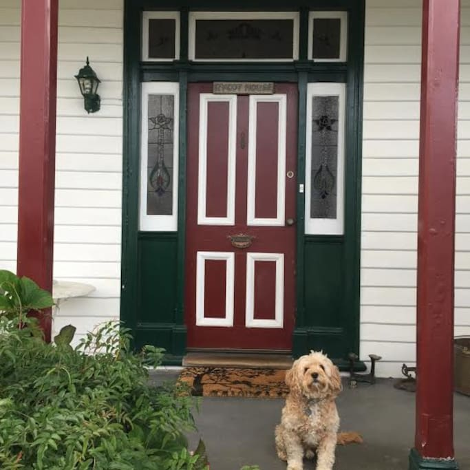 Your entrance and  Billy the dog to welcome you