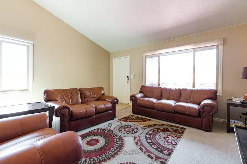 Open Spacious Living Room