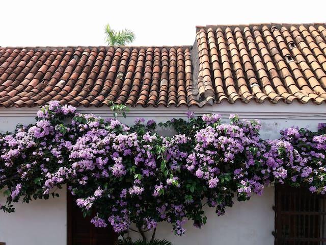 TRANQUILO Y ACOGEDOR HOSPEDAJE CONSCIENTE - Cartagena - Dům pro hosty