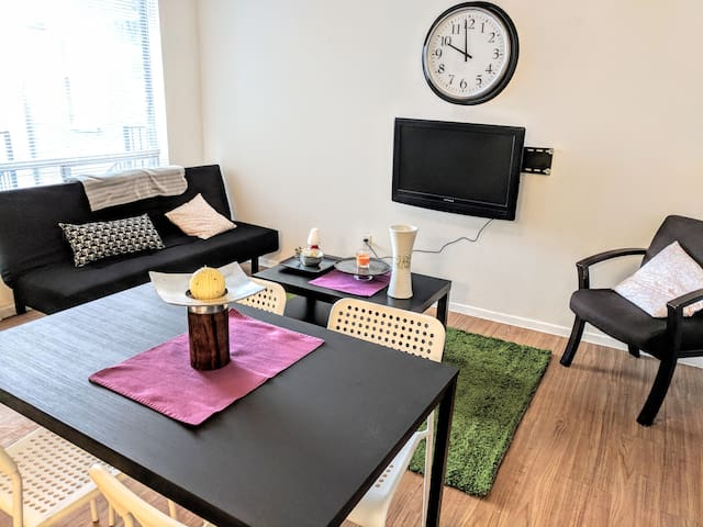 Thrifty & functional 1BD Apt near AUS and downtown