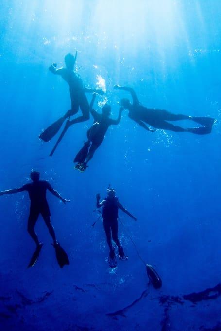 Snorkeling crew!