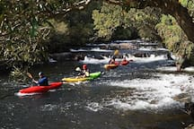 Canoeing/kayaks available for tour or hire at nearby Barrington Outdoor Centre
