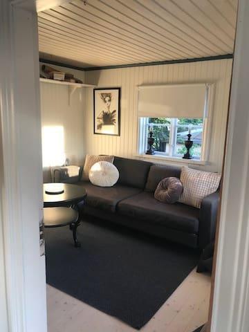 Vardagsrummet med bäddsoffa/living room