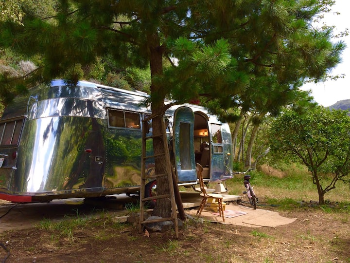 Vintage Airstream in 4 acres canyon