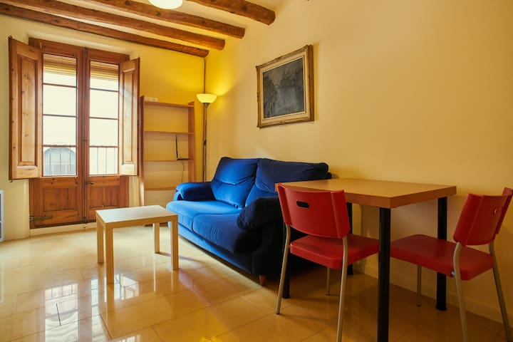 LOFT/STUDIO INDEPENDENT IN VILAFRANCA.