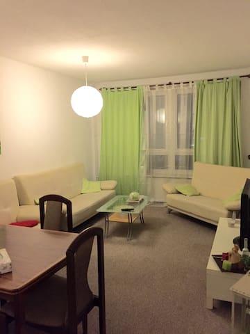 sonnige gem tliche 2 zimmerwohnung wohnungen zur miete in laatzen nds deutschland. Black Bedroom Furniture Sets. Home Design Ideas