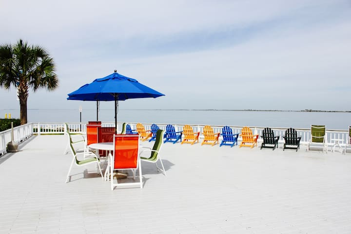 Beautiful Waterfront 1BR in Tampa for 4 guests