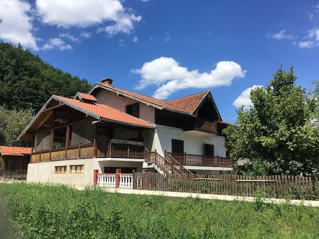 Puzovic House