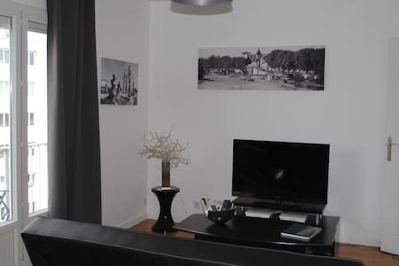 Appartement cosy. - Orléans