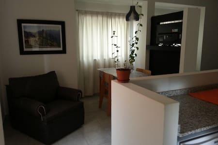 Departamentos Amueblados. - Pilar Centro - Lägenhet