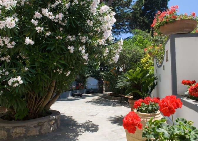 Traditional Caprese Garden