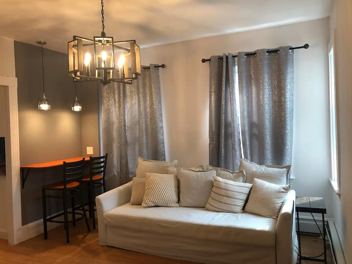 Large & Cozy 3 Bedroons/Nice Location/Free Parking
