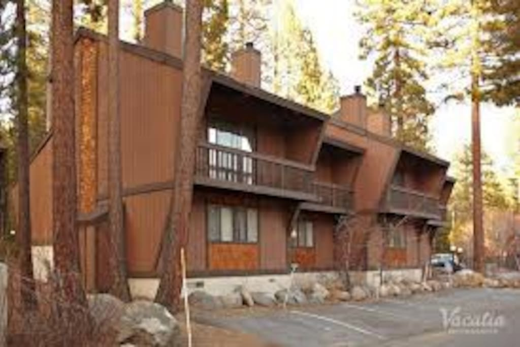 incline village buddhist dating site Kim w's reviews, photos and other  incline village, nv 89451 7/17/2018  i couldn't imagine getting a double i'd much rather have 2 singles :) .