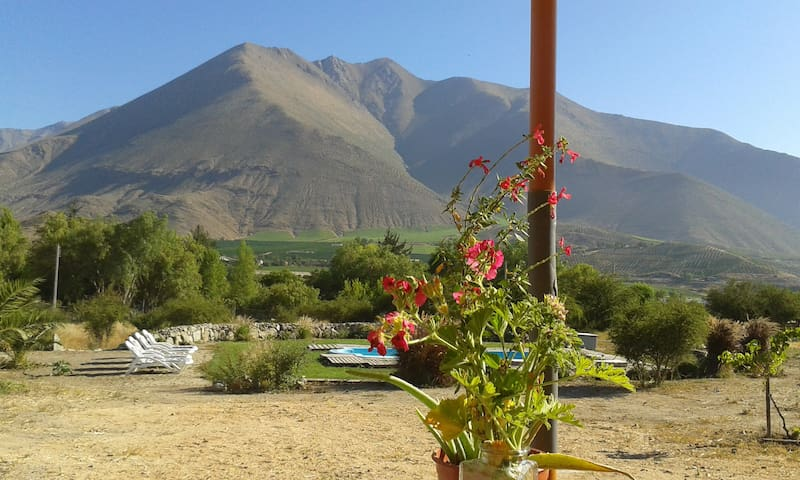 Elqui Valley , Cozy room two beds in green BnB