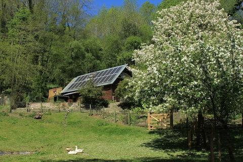 The Studio: family/pet-friendly woodland retreat