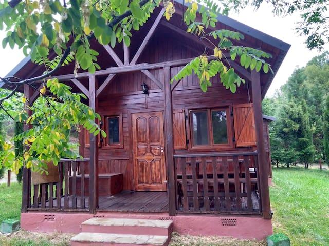 Una confortable Cabaña de madera en plena montaña.