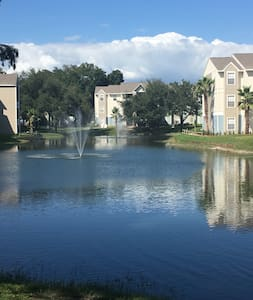 Apartment near USF and Busch Gardens - Tampa