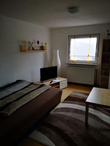 Wohn-/Schlafraum mit Bett und Sofa