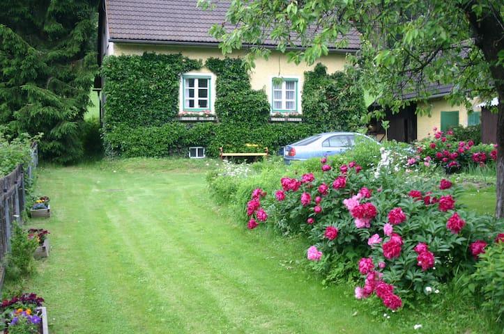 Nettes altes Ferienhaus im Grünen