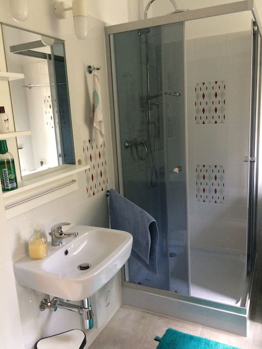 Duschbad mit Waschmaschine aus 2017