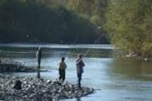 Fishing on the vedder river, just one of the many outdoor activities for you to enjoy while visiting chilliwack.