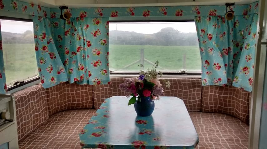 Cheap + very cheerful caravan - in Preseli Hills