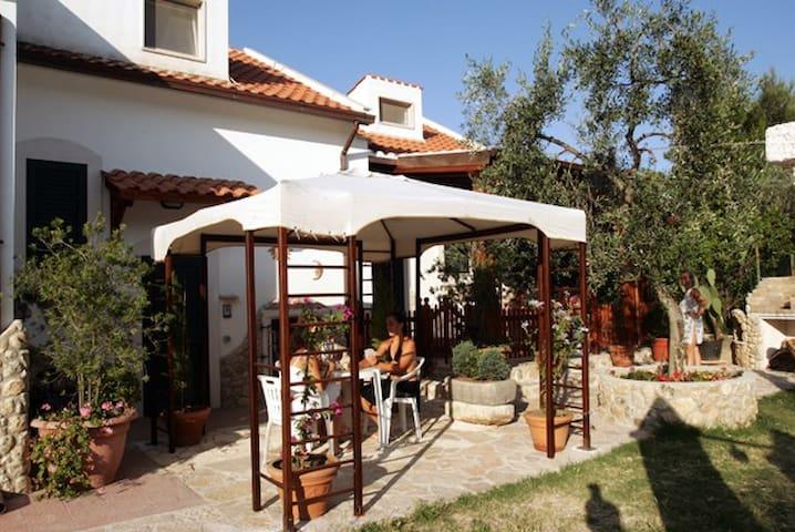 La Taverna Del Saraceno