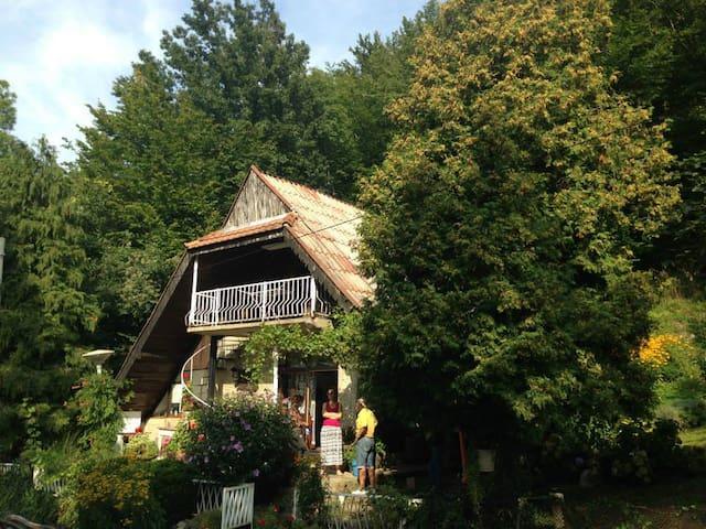 Village house Debolad