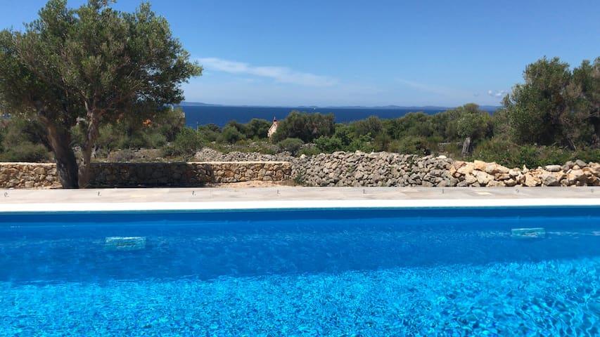Olive Paradise