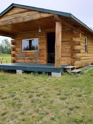 Wild Bird Cabin #2
