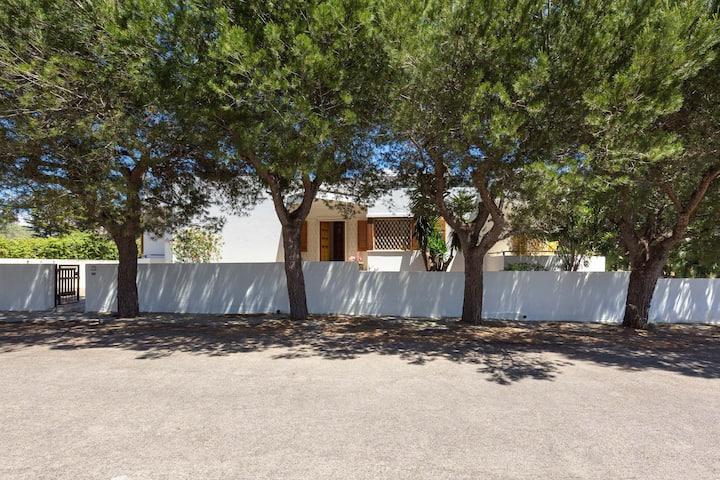1160 Villa Rosaria
