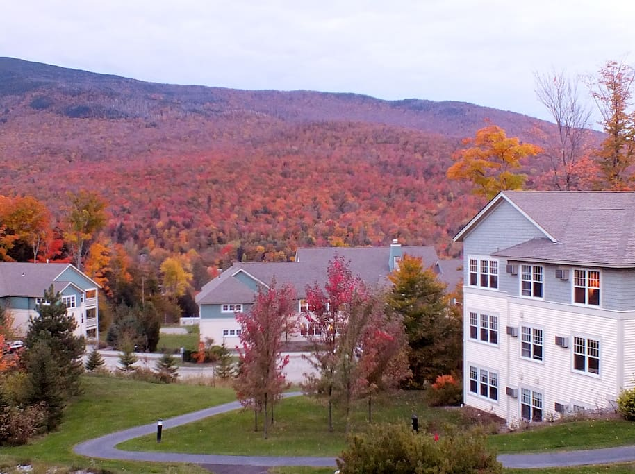 Northern Vermont Fall Foliage
