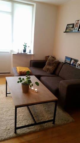 Stor lejlighed (80 kvm) perfekt til studiestart - Odense - Apartment