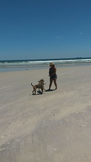 Walking the dogs - Lagoon Beach is 10 minute walk from the house