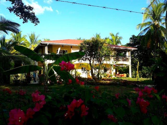 "Down by the Sea, Beachfront  ""Grand Studio"" - Guanacaste Province - Lyxvåning"