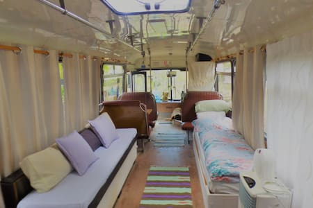Magic Bus stay-Yamba hinterland bush retreat
