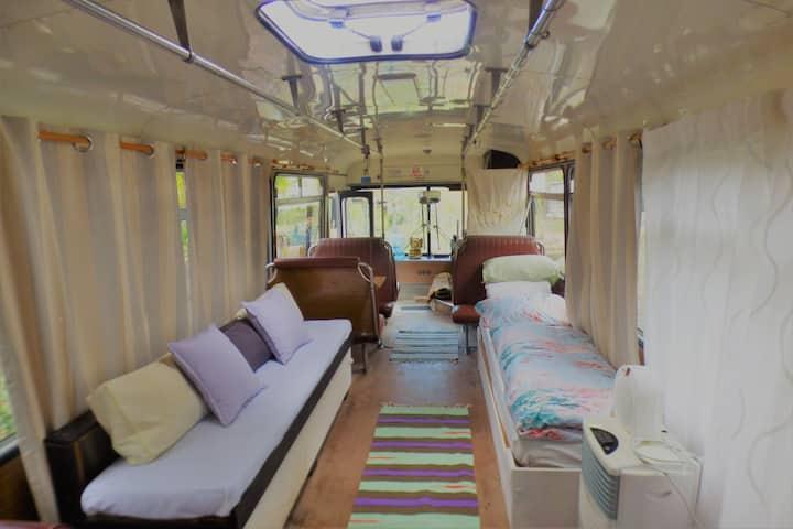 Magic Bus stay-Yamba hinterland bush retreat