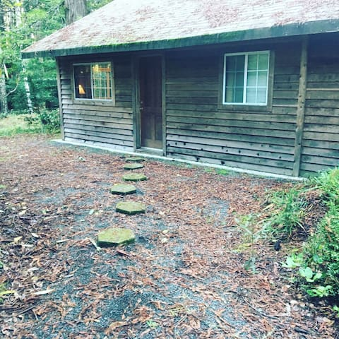 Cabin in Redwoods at Ocean! - Albion - House