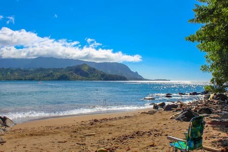 NEW! Hidden Gem-A Honu World close to Hanalei Bay!