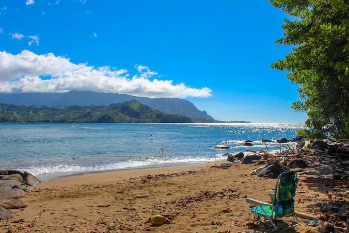NEW! Hidden Gem-A Honu World close to Hanalei Bay!